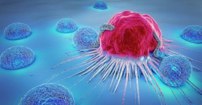 Israeli Scientists Claim To Have The Cure For Cancer – Inner